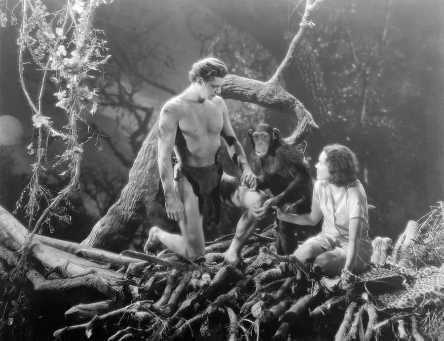 The Men Behind Tarzan: The Real-Life Jungle Man and the Troubled Author Who Brought Him to Life - Page 7 of 36